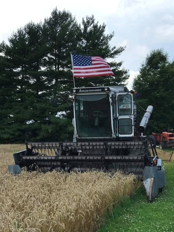 Nothing says 4th of July like wheat harvest